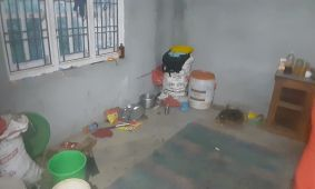 Woonkamer/keuken/slaapkamer